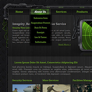 International Security Group Website Design